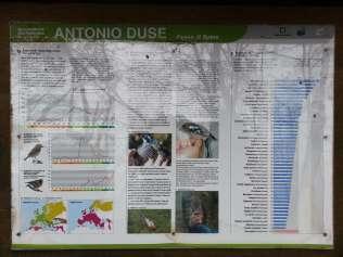 """Bacheche sull'Osservatorio Ornitologico """"A. Duse"""" di Passo di Spino (2002)"""