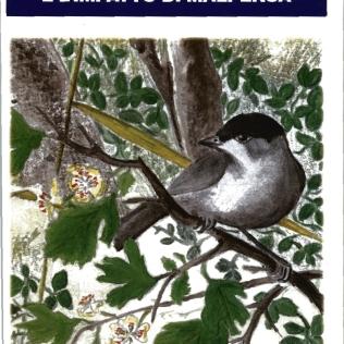 La migrazione degli Uccelli nella Valle del Ticino e l'impatto di Malpensa (2003)