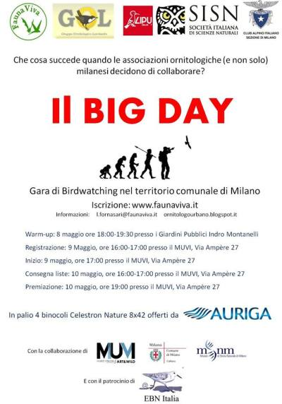 locandina Big Day