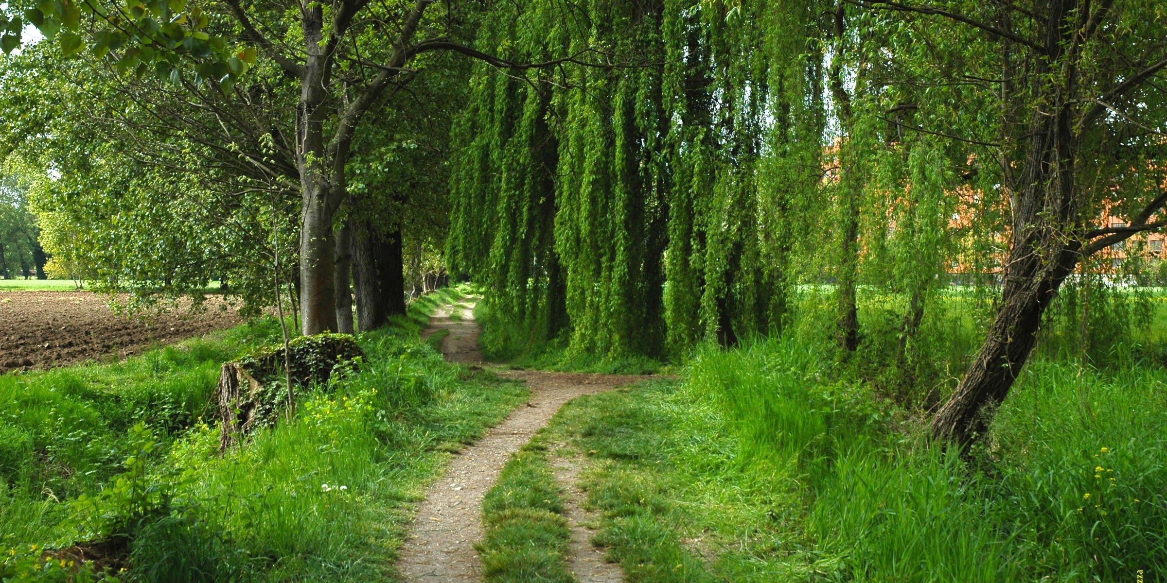 Parco Agricolo del Ticinello