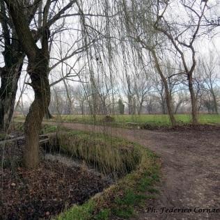 Parco del Ticinello